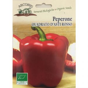 Red Pepper Square Asti seeds - 1g