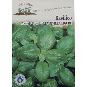 Riviera Ligure (Genovese) Basilico seeds - 5g