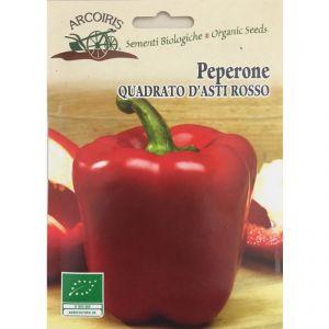 Peperone Quadrato d'Asti Rosso - Semi bio 1g