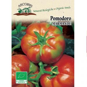 Marmande Tomatoes seeds - 0,5g