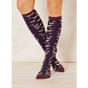 "BT17LS118 ""Jarrah Butterfly"" long Socks Woman BRAINTREE ®"